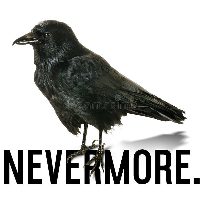 Halloweenowy kruk Nevermore Poe royalty ilustracja