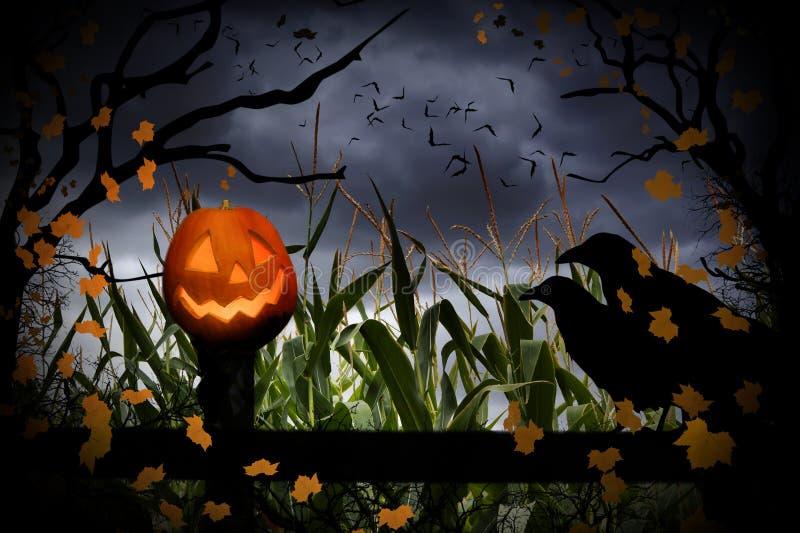 Halloweenowy lampion i wrony zdjęcia stock