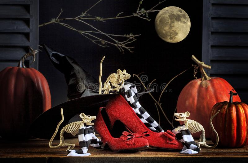 Halloweenowych mysz Rubinowych kapci Pasiaste pończochy obraz royalty free