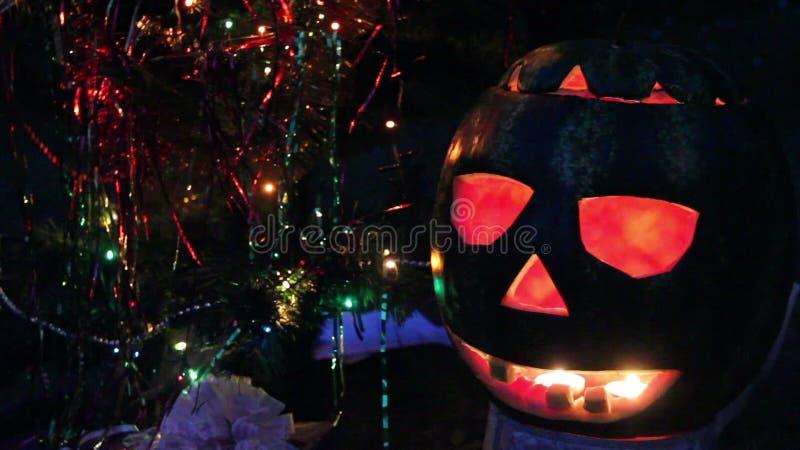 Halloweens arbuz pod choinką zbiory wideo