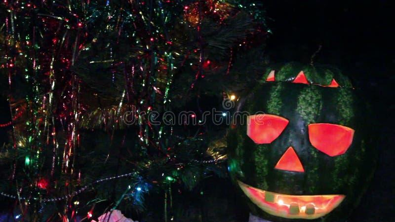 Halloweens arbuz pod choinką zdjęcie wideo