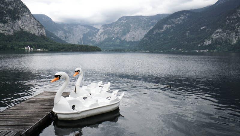 Hallstatt Αυστρία 9 λίμνη του Κύκνου στοκ εικόνες με δικαίωμα ελεύθερης χρήσης