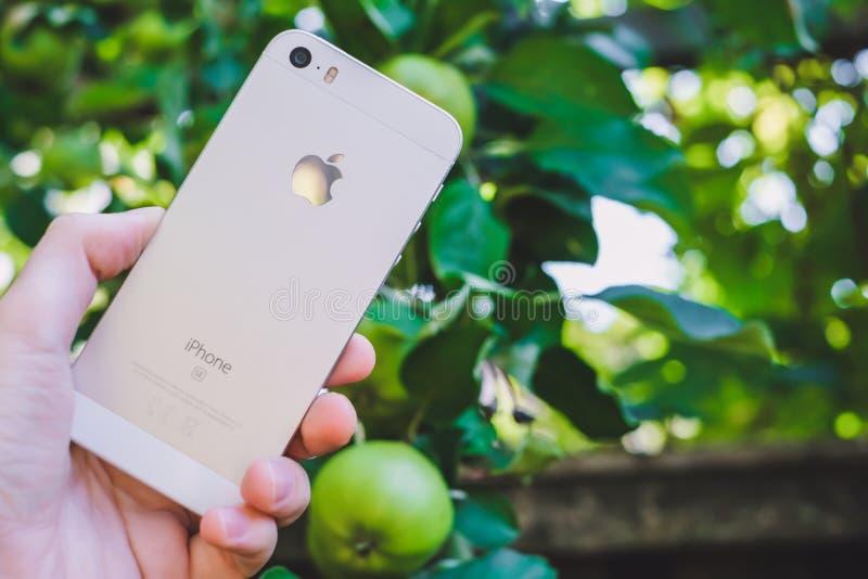HALMSTAD, SUÈDE - 9 AOÛT 2018 : image de concept de la main de la femme tenant le nouveau Se blanc ou argenté d'iphone de pomme p photographie stock libre de droits