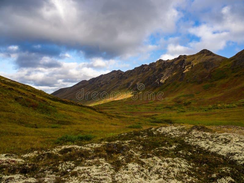 Halna dolina i jesieni tundra, Alaska zdjęcia stock