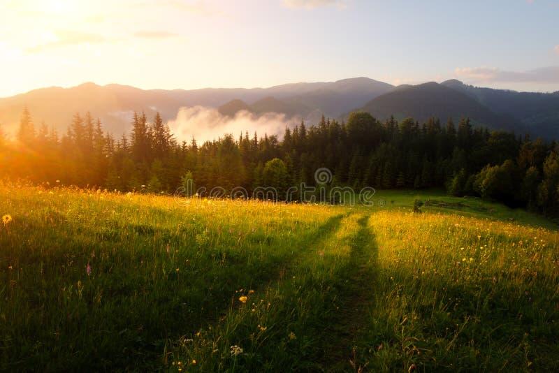 Halna dolina podczas wschodu słońca obrazy royalty free