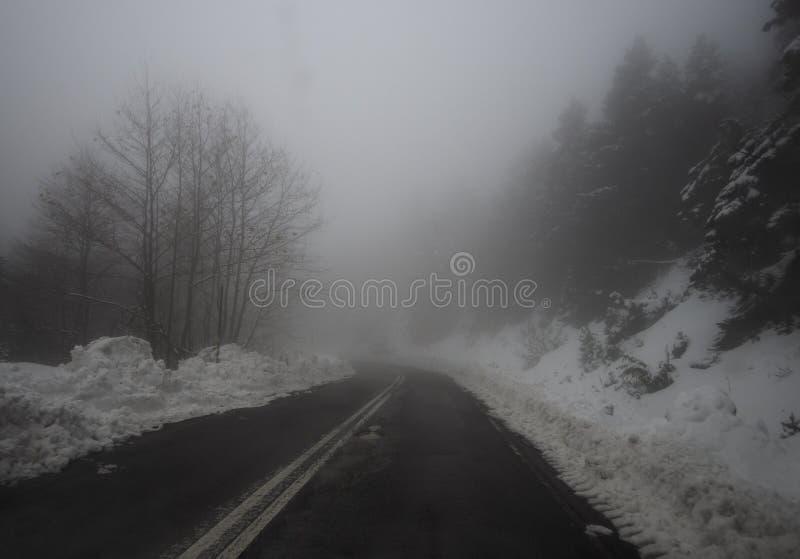Halna droga, mgła, chmury i śnieg w lesie w górach Dirfis na wyspie Evia, Grecja fotografia stock