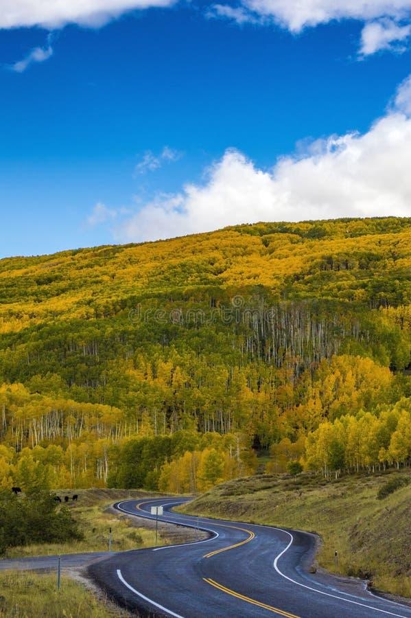 Halna droga w Utah zdjęcie royalty free