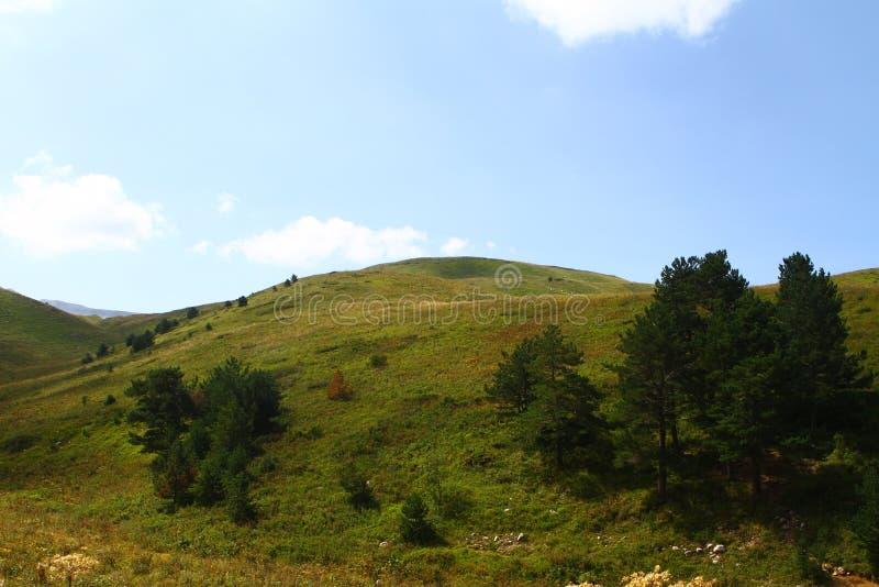 Halna faleza z drzewami na nim, naturalna krajobrazowa fotografia obrazy stock