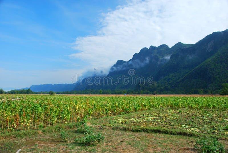 Halna kryje Kong Lora jama w Środkowym Laos obrazy stock