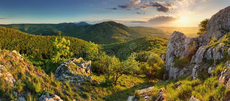Halna lasowa panorama - Sistani fotografia royalty free
