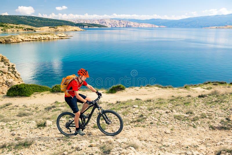 Halna rowerzysta jazda na rowerze w lato zmierzchu drewnach zdjęcie royalty free