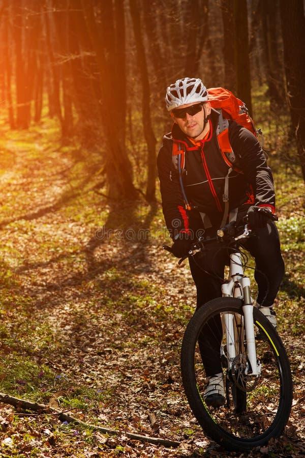 Halna rowerzysta jazda na rowerze w springforest krajobrazie zdjęcie royalty free