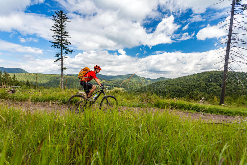 Halna rowerzysty kolarstwa jazda w drewnach i górach zdjęcia stock