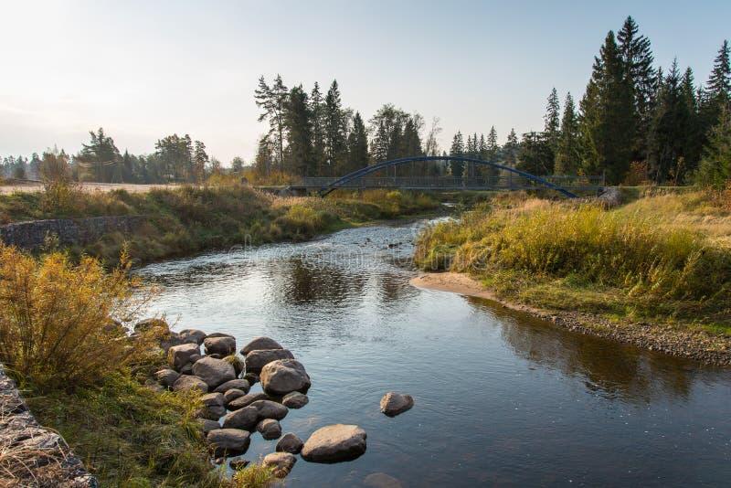 Halna rzeka z skałami i piaskowami zdjęcie stock