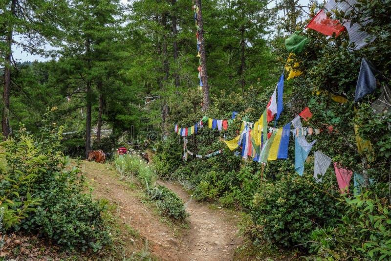 Halna sceneria w Paro, Bhutan obrazy royalty free
