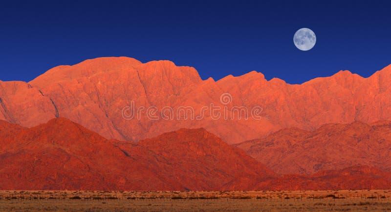 Halna sceneria, Namib pustynia obraz royalty free