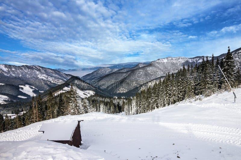 Halna sceneria, zimy Tatry krajobraz, las, Sistani obrazy stock