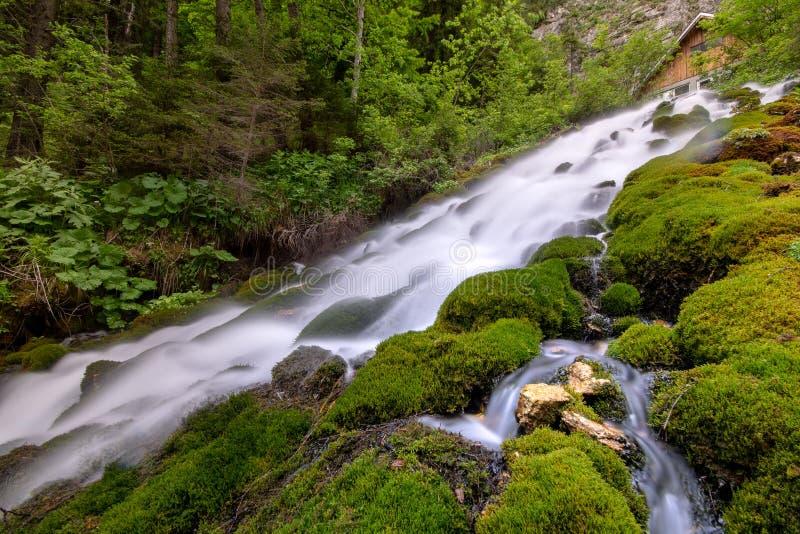 Halna siklawa z czystą wodą i zieleni roślinnością fotografia stock
