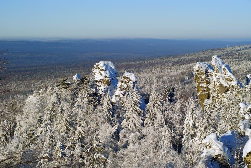 Halna tundra w mgle fotografia stock