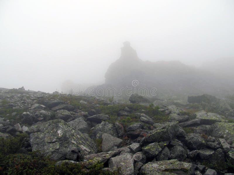 Halna tundra w mgle obrazy stock