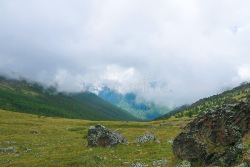 Halne granie i łąka sceniczny chmurny widok Altai g?ry, Rosja obraz royalty free
