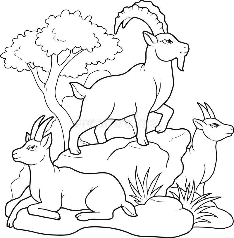 Halne kózki rodzinne ilustracja wektor