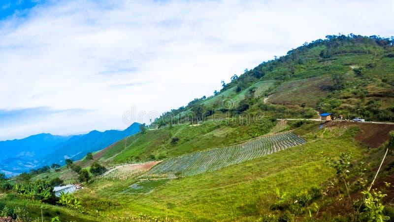 Halnego szczytu nieba przygody północ Tajlandia obrazy stock