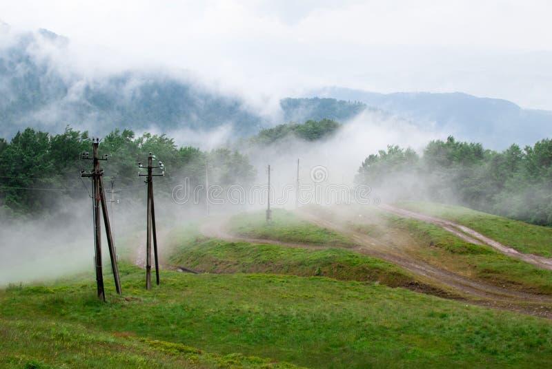 Halnej mgły pokrywy jaskrawa świeża łąka z elektrycznymi filarami fotografia stock