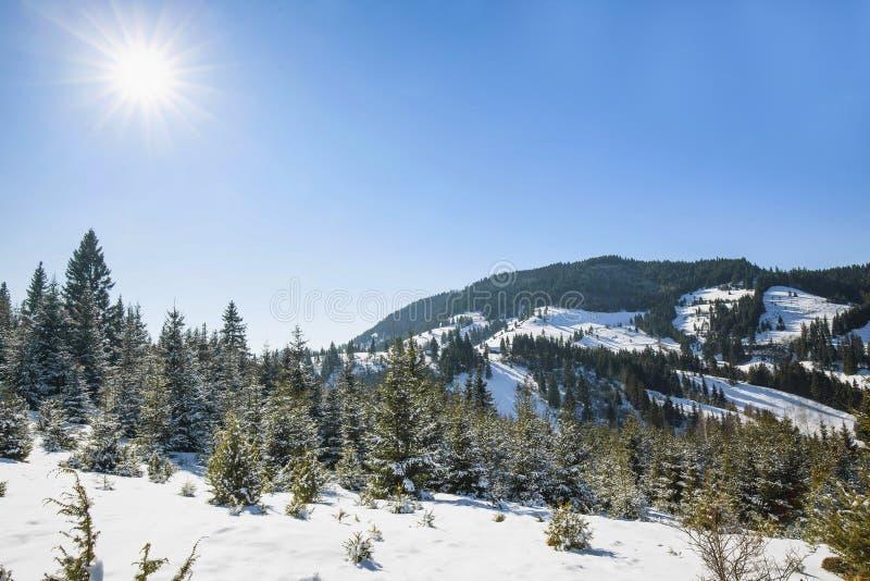 Halnej natury zimy śnieżny krajobraz zdjęcia royalty free