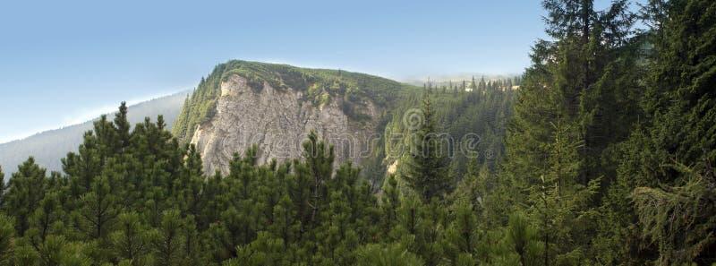 halnej panoramy odgórny widok obrazy royalty free