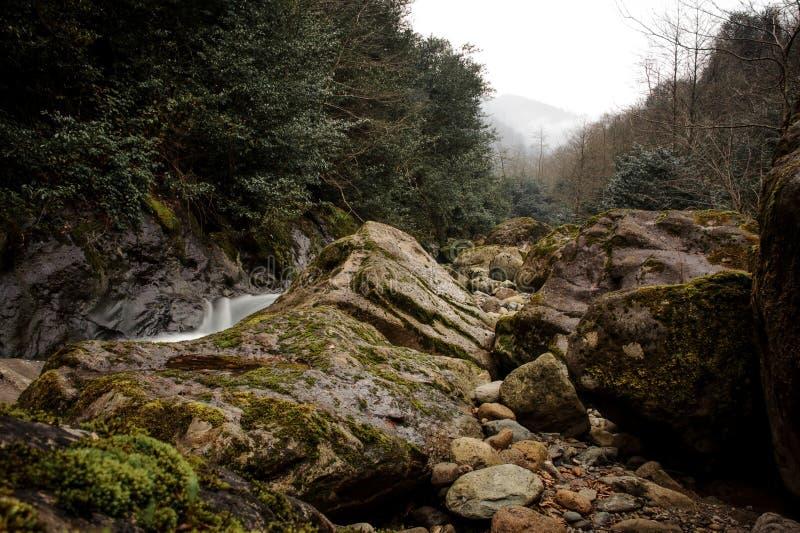 Halni rzeka przepływy otaczający mech zakrywającymi kamieniami obrazy stock
