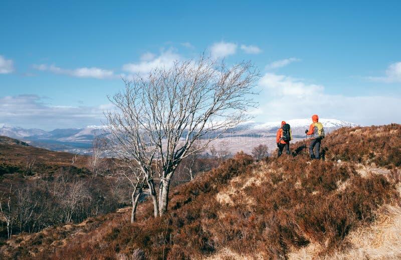 Halni wycieczkowicze chodzą w średniogórzach, Szkocja zdjęcie royalty free
