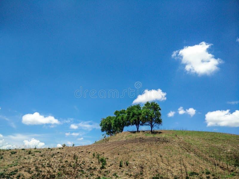 Halny łysy i niebieskie niebo obraz royalty free