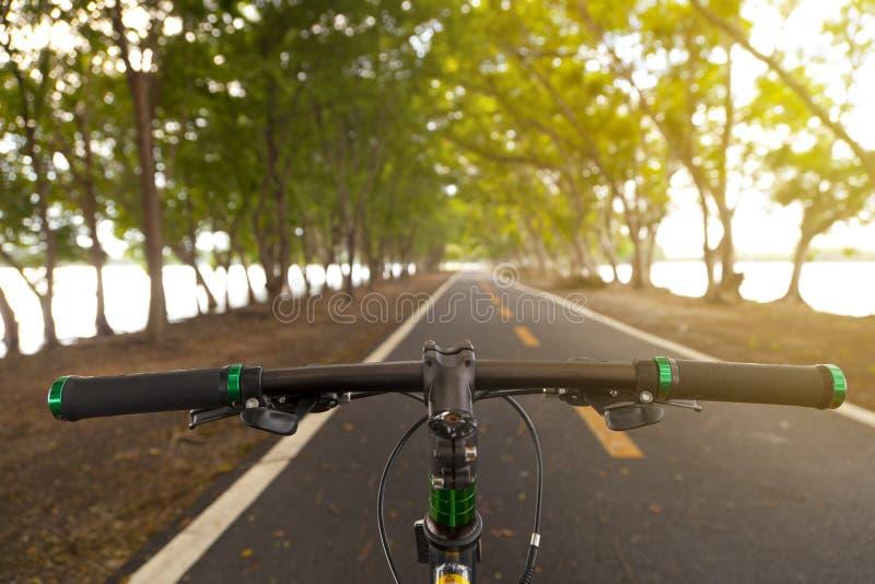 Halny bicykl w parku zdjęcie stock