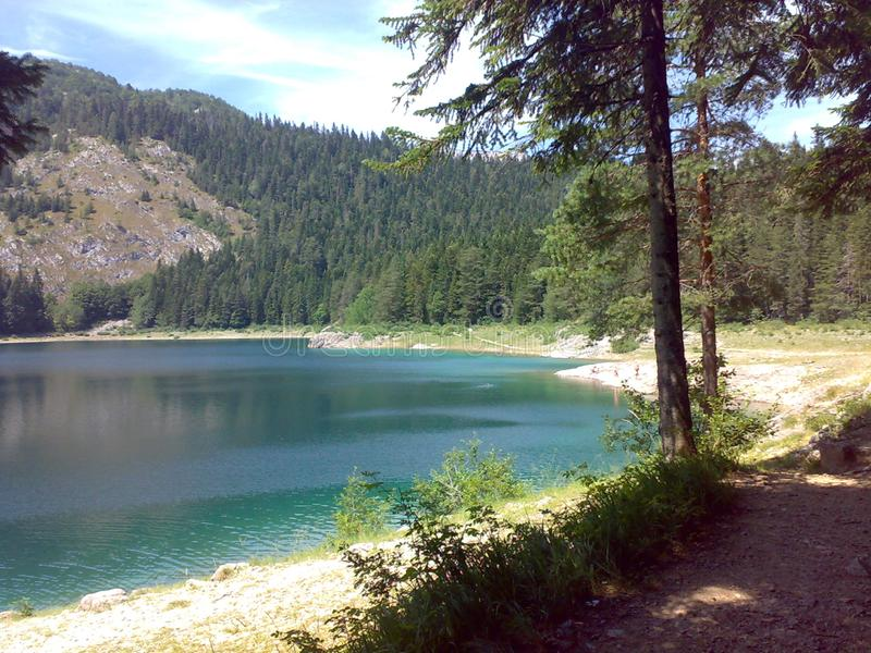 halny czarny jezioro otaczający ciemnym lasem fotografia royalty free