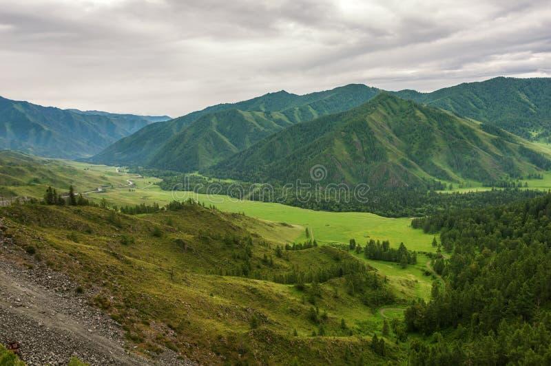 Halny dolinny lasowej drogi odgórny widok zdjęcie stock