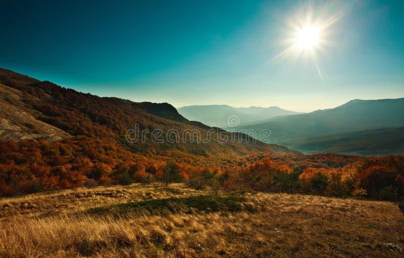 Halny jesień krajobraz z kolorowym lasem fotografia royalty free