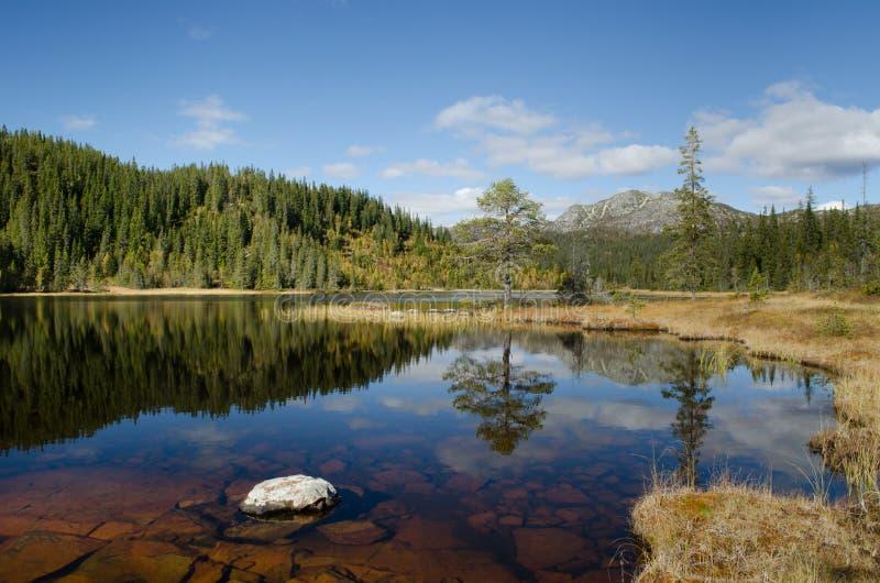 Halny jeziorny widok w jesieni zdjęcia stock