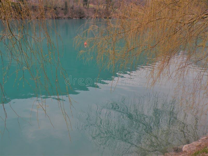Halny jezioro z turkusową błękitne wody i odbiciem gałąź w wodzie obraz royalty free