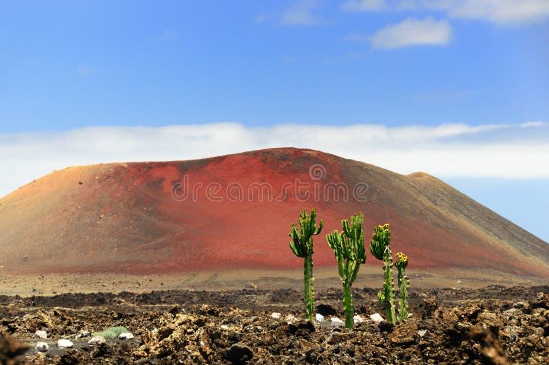 Halny Kolorado, Lanzarote obraz stock