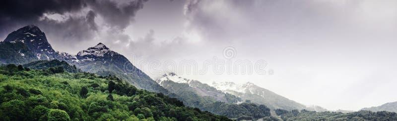 Halny las i chmury obraz stock