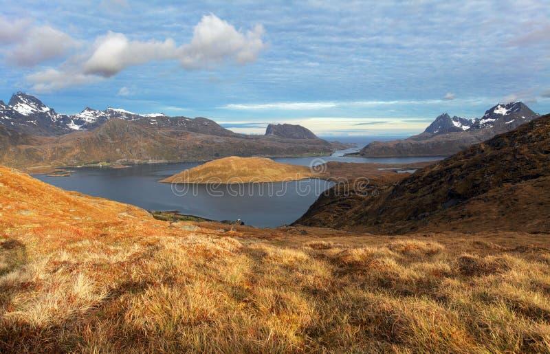 Halny Norway krajobraz - Lofoten fotografia royalty free