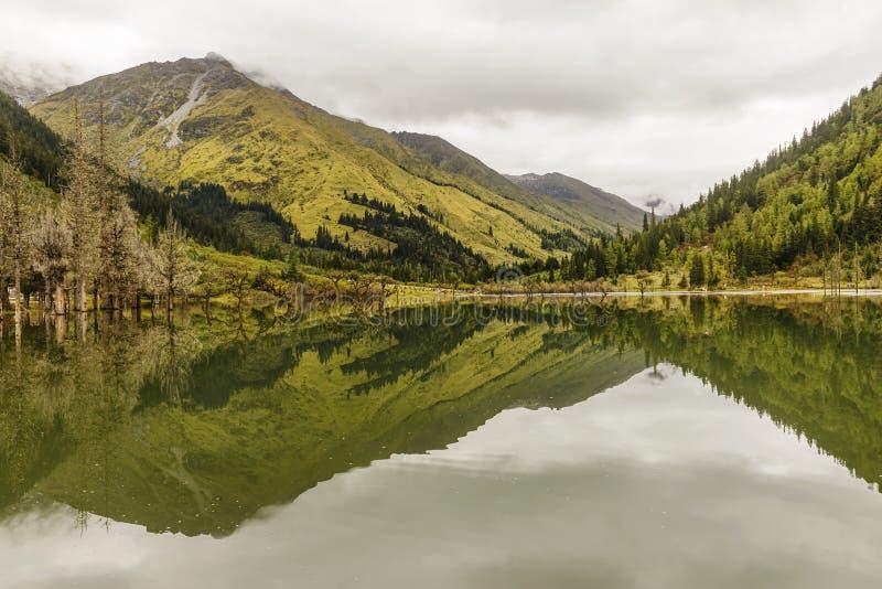 Halny odbicie w jeziorze obraz royalty free