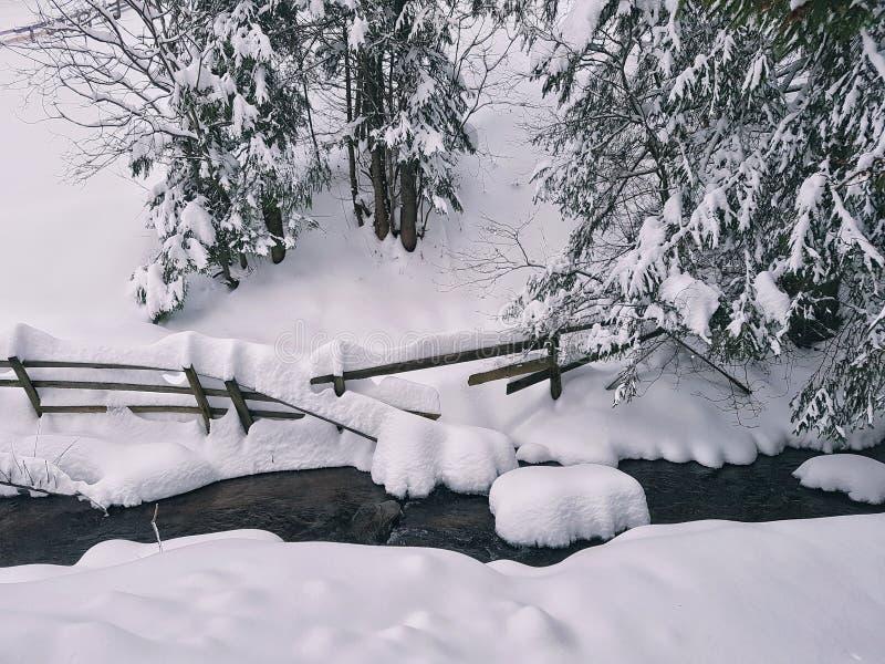 Halny opadu śniegu landskape obraz stock