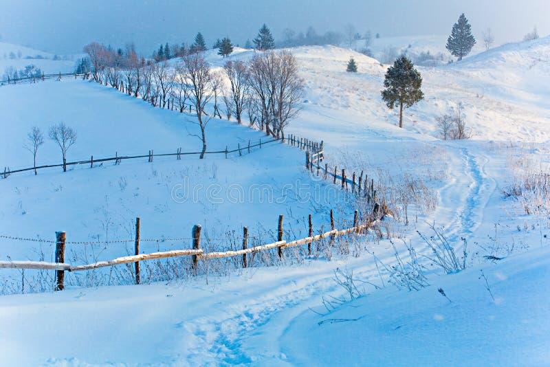 Halny piękna pojęcie Zimny zima dzień w górkowatym terenie co rano koncepcja nowego roku obrazy royalty free