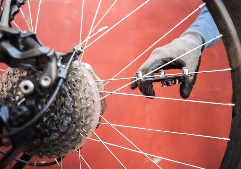 Halny rowerowy naprawianie Mistrzowskie naprawiania tylni koła roweru szprychy fotografia stock