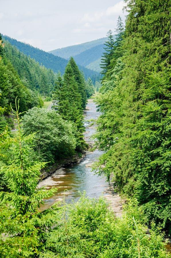 Halny strumień w lato pogodzie zdjęcie stock