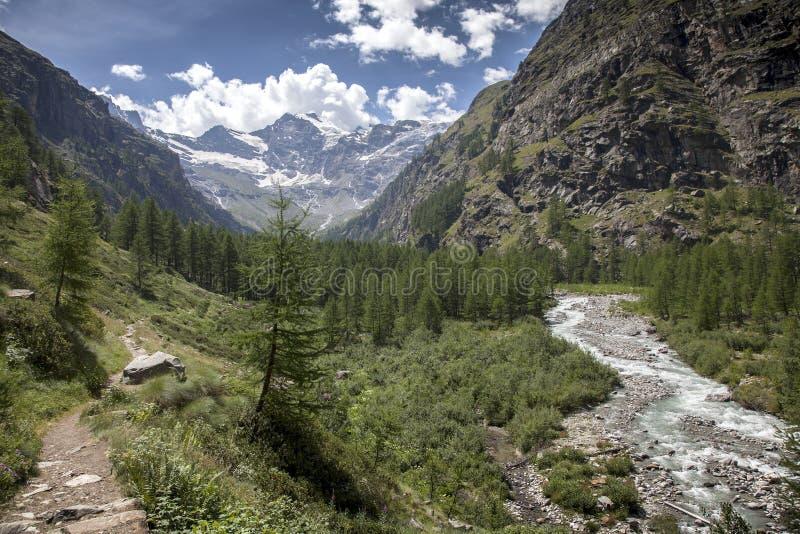 Halny strumień w włoskim parka narodowego granu paradiso z śniegiem nakrywał góry w tle zdjęcie stock