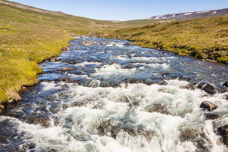 Halny strumyk - Iceland, Westfjords. zdjęcie stock
