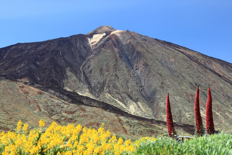 halny teide Tenerife zdjęcia royalty free